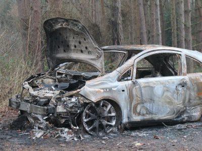 alex partin 8 car crash